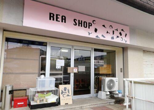 ペットショップ新規オープン店